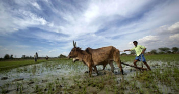 Modi To Launch Scheme To Give Rs 6,000 To Farmers On February 24